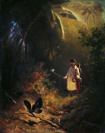 C.Spitzweg / The Butterfly Catcher by AKG  Images