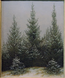 C.D.Friedrich, Fir Trees in Snow / Ptg. by AKG  Images