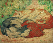 F.Marc, Cats on a red blanket / 1909/10 by AKG  Images
