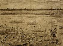 V. van Gogh, Sumpflandschaft von AKG  Images