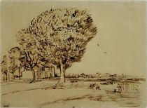 V. v. Gogh, Landschaft mit Haus u. Bäumen von AKG  Images