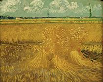 V. v. Gogh, Weizenfeld mit Kornbündel by AKG  Images