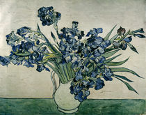 Van Gogh / Bunch of Irises / 1890 by AKG  Images