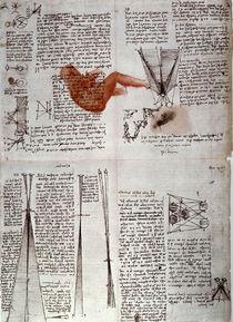 Leonardo / Physiologie des Sehens/f. 118 v by AKG  Images