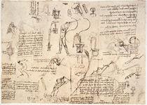 Leonardo / Bewegungsstudien u. a./f. 119 v von AKG  Images