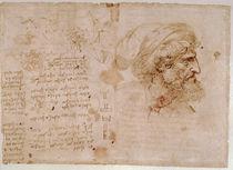 Leonardo / Botanik / Augenheilkunde / fol. 126v by AKG  Images