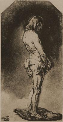 Rembrandt, Männlicher Akt / Zeichnung von AKG  Images