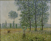 Claude Monet / Fields in Spring / 1887 by AKG  Images
