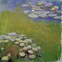 Claude Monet / Water Lilies by AKG  Images