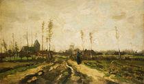 Van Gogh / Paysage de Brabout/1885 von AKG  Images