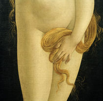 S.Botticelli (Workshop) / Venus by AKG  Images