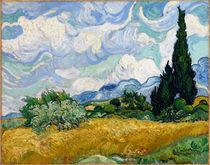 Van Gogh / Weizenfeld mit Zypressen / 1889 von AKG  Images