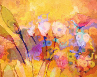 Flower-concerto