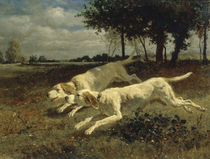 C.Troyon / Running Dogs / 1853 by AKG  Images