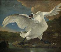 J. Asselijn, Der bedrohte Schwan / Gemälde um 1650 by AKG  Images