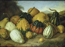 Adolf Senff, Great still life with pumpkins / painting by AKG  Images