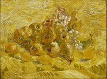 V. van Gogh, Quitten, Zitronen, Birnen und Trauben by AKG  Images