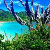 Beach Day von Douglas Gago