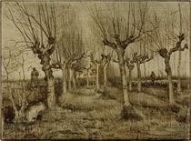 V. van Gogh, Kopfweiden von AKG  Images