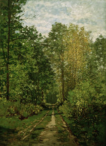 Monet / Forest path / Painting by AKG  Images
