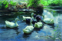 Ducks in a Pond / A.Koester / Painting by AKG  Images