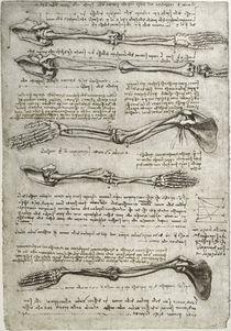 Leonardo / Arm– Handknochen Drehung/f. 135v by AKG  Images