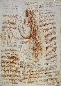 Leonardo / Herz und Umgebung / fol. 162 r by AKG  Images