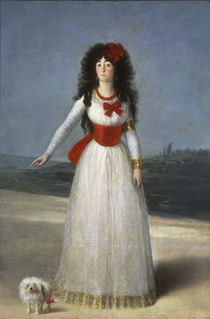 Duchess of Alba / by Goya by AKG  Images