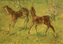 "F.Marc, ""Foals on a pasture"" / painting by AKG  Images"