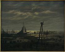 C.D.Friedrich, Sumpfiger Strand von AKG  Images