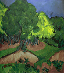 Kirchner / Landscape w. chestnut tree/c1913 by AKG  Images