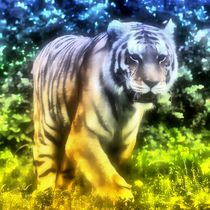 Traum Tiger by kattobello