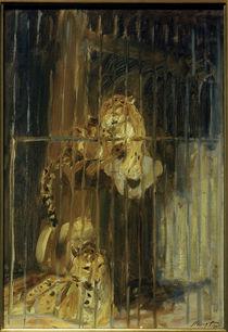 M. Slevogt, Zwei Leoparden im Käfig by AKG  Images