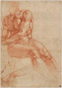 Michelangelo Buonarotti, Sitzender Jünglingsakt von AKG  Images