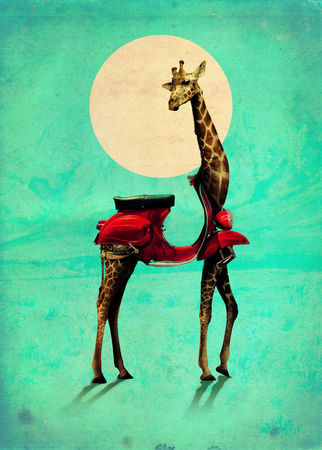 Giraffe-gb-2