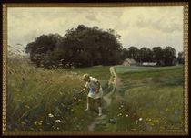 Peder Mørk Mønsted, Meadow Flowers by AKG  Images