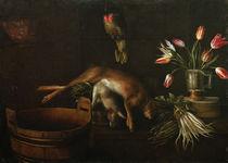 S.Stosskopf, Stilleben mit Papagei by AKG  Images