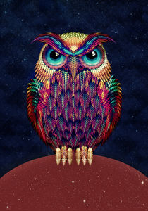 Owl 2 by Ali GULEC