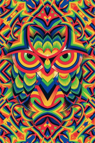 Owl-3