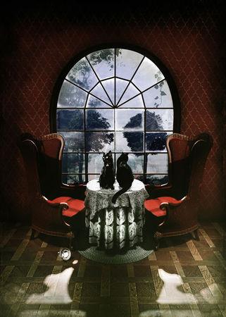 Room-skull