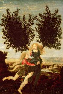 Daphne and Apollo, c.1470-80 by Antonio Pollaiuolo