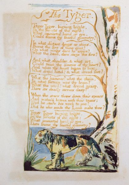 """the imagery in the poem the tyger by william blake The tyger • """"the tyger,"""" along with """"the lamb,"""" first appeared in a collection of poems entitled songs of innocence in 1789 in 1794, blake combined these poems with a."""