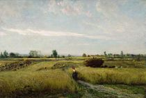 The Harvest, 1851 by Charles Francois Daubigny