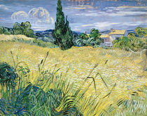 Green Wheatfield with Cypress von Vincent Van Gogh