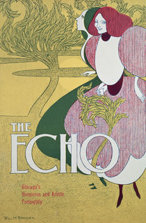Front cover of 'The Echo' von William Bradley