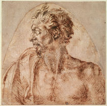 Study of Head and Shoulders by Michelangelo Buonarroti