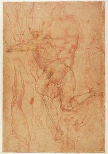Figure Study von Michelangelo Buonarroti