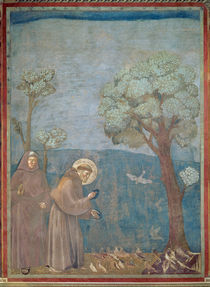St. Francis Preaching to the Birds by Giotto di Bondone