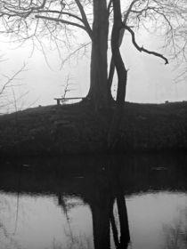 Nebelbank von Jens Uhlenbusch