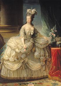 Marie Antoinette Queen of France by Elisabeth Louise Vigee-Lebrun
